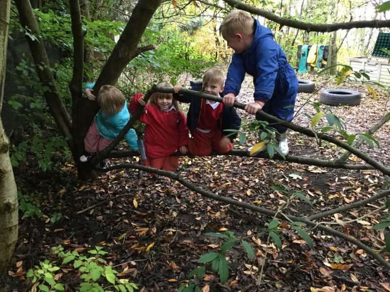 Autumn Time in EYFS 2