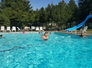 Floradale-Pool-1