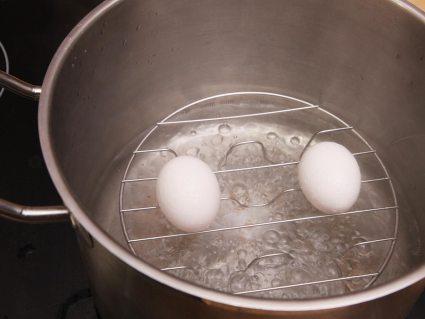 Daen_eggsinwater