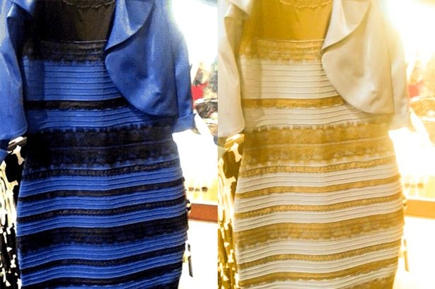 The dress in two colour representations. Photograph by Cecilia Bleasdale