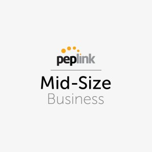Peplink for Mid-Size Business