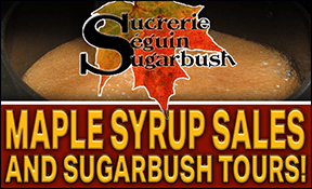 Seguin Sugar Bush