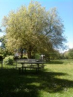picnicking in Tivoli Park