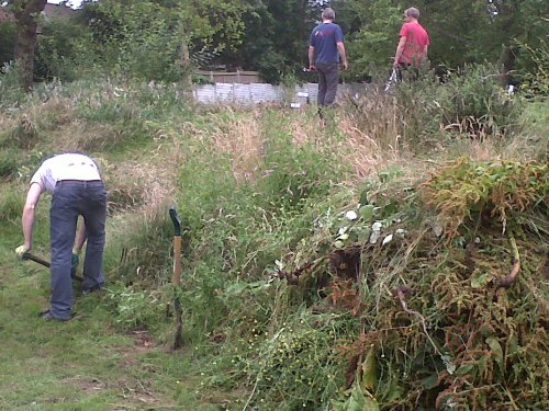 Volunteers digging in Tivoli Park