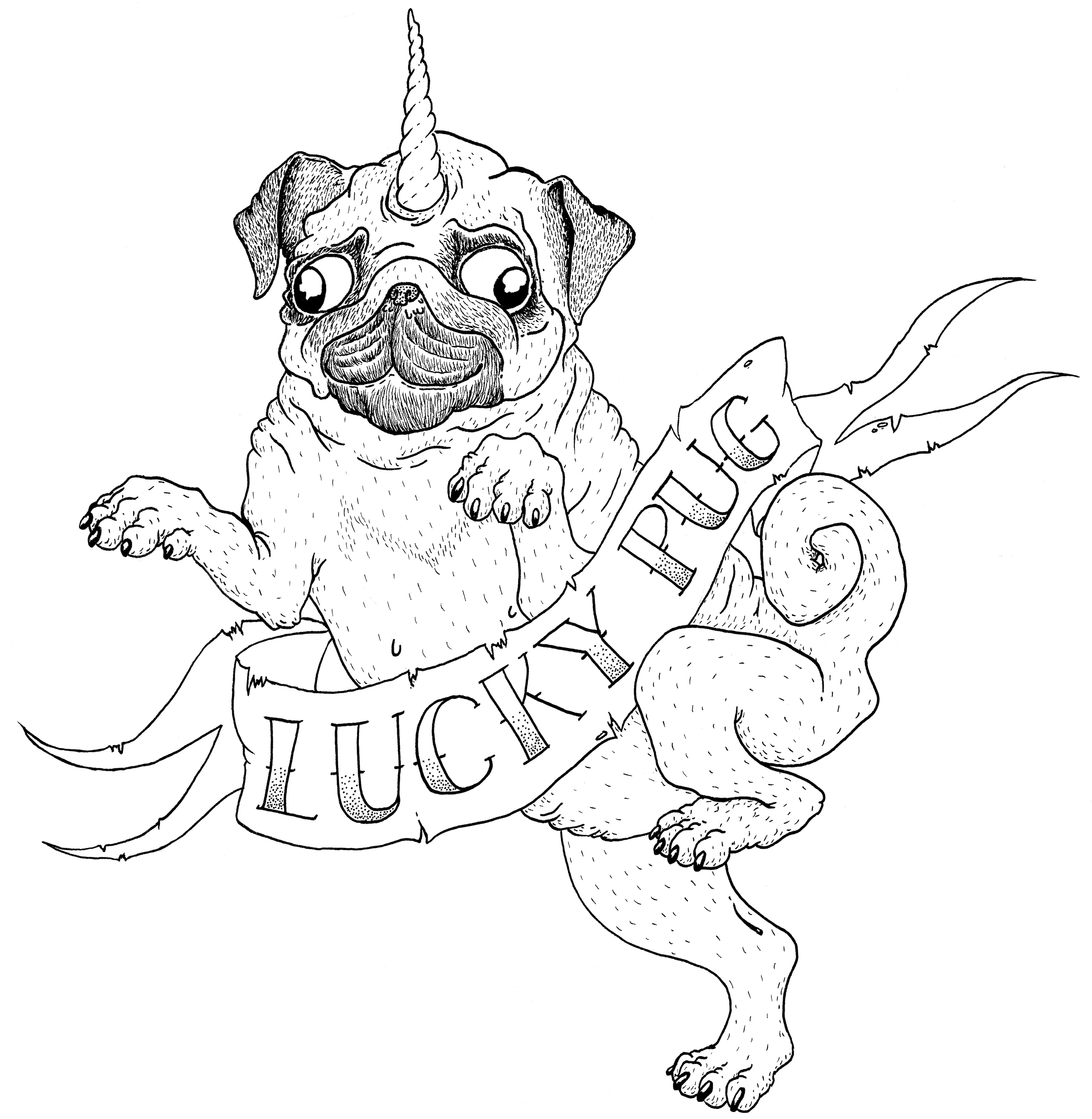How To Draw Easy Cute Drawings Pugs Sketch Coloring Page A