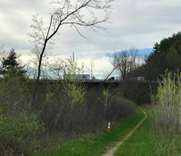 west river trail april 2017 - 2