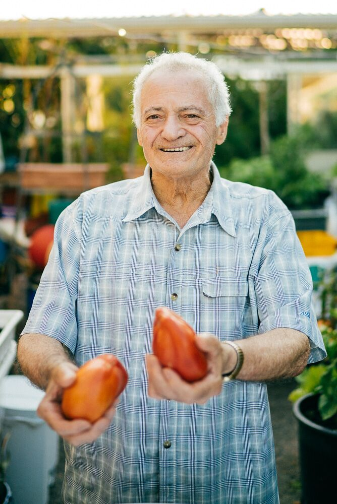 If you ask dad, he'll tell you he eats a kilogram of tomatoes every day in the summer. Photo credit: Alaina Michelle Photography: alainamichelle.ca