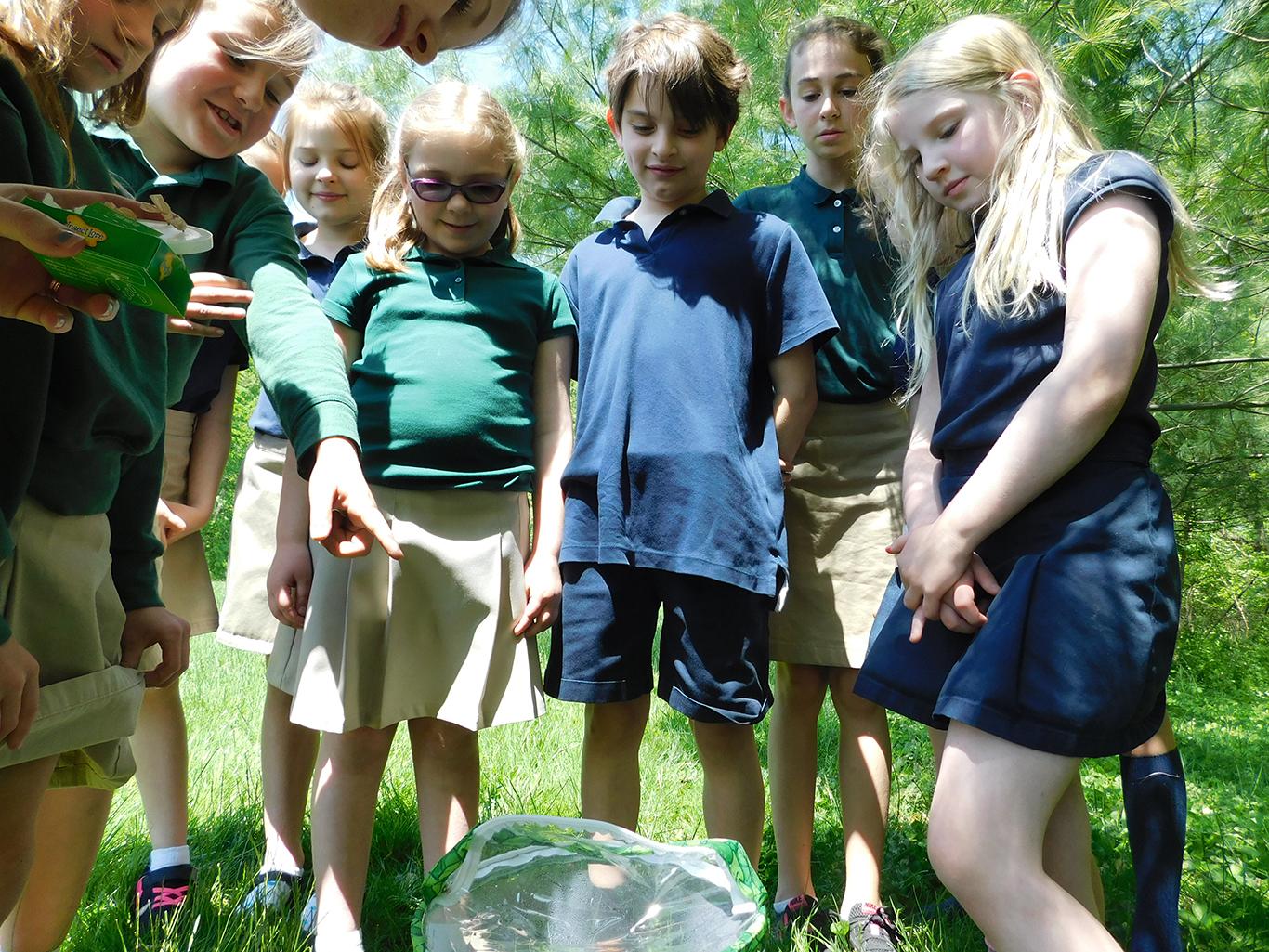 First Graders Releasing Butterflies