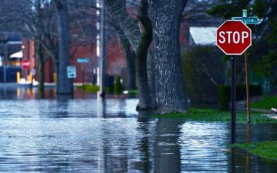 Supporting Disaster Areas – Disaster Relief