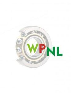 Wasttom logo