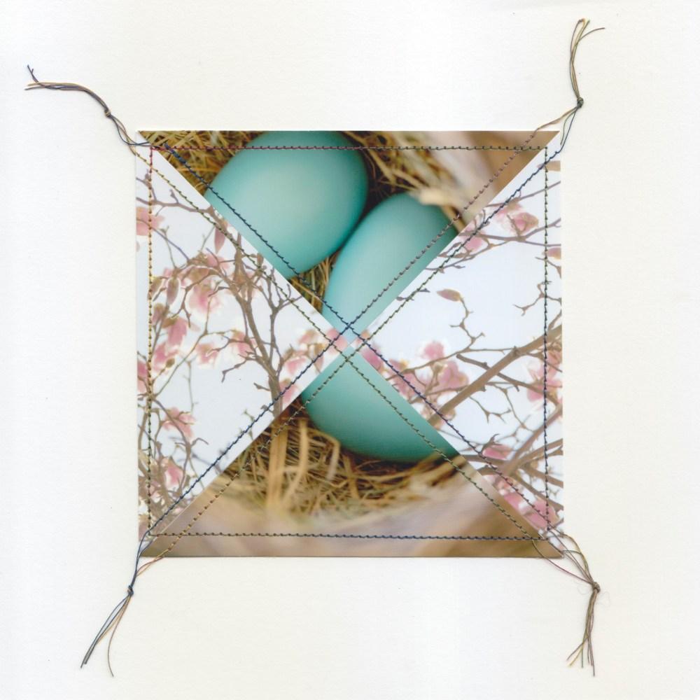#53   Robin Eggs and Magnolia