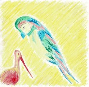 #06 | Avian Pas de Deux