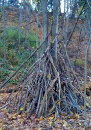 who's in that meditation tipi in the woods?