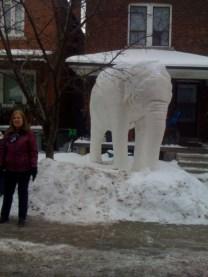 We visit the Yarmouth elephant