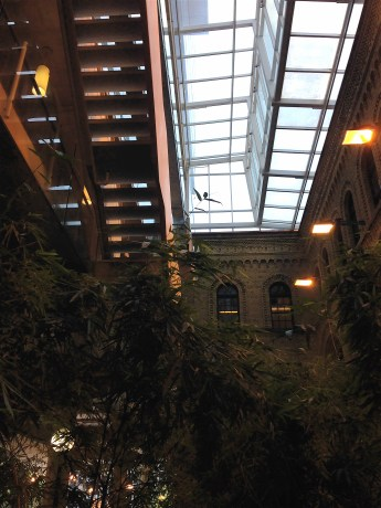 Beautiful atrium between two buildings contains the wonderful indoor bamboo garden!