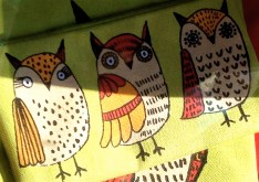 cute owl fabric pouch in Red Pegasus window