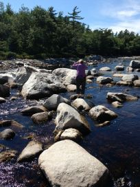 Janet considering a dangerous rock jump on the Roseway River. (She wisely decided against it!)