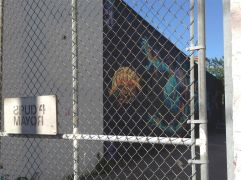 Cinzah Merkens' fabulous fenced-in mural, next to the detox centre. What a backyard illustration!