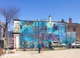 South side mural (by Alexa Hatanaka & Patrick Thompson) is at our destination! (Birds & Beans!)