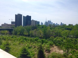 view of downtown TO from Bridgepoint deck