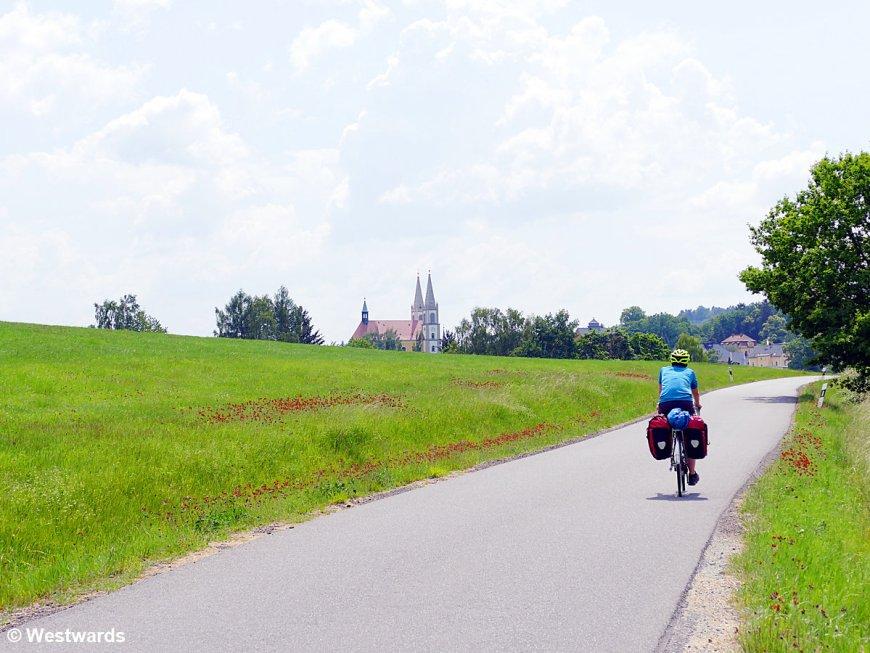 Cyclist between green fields
