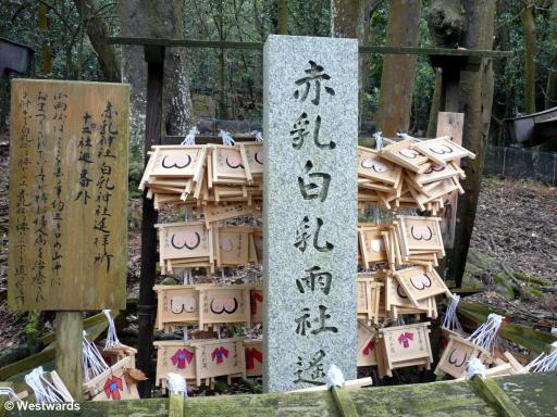 20100405 Nara Kasuga jinja Frauenschrein 1140162