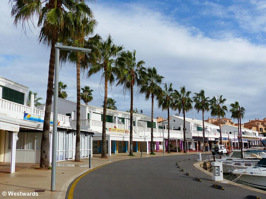 Harborfront fringed with palm trees
