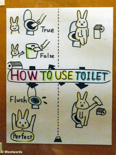 Comic-style drawn explanations on how to use Japanese toilets