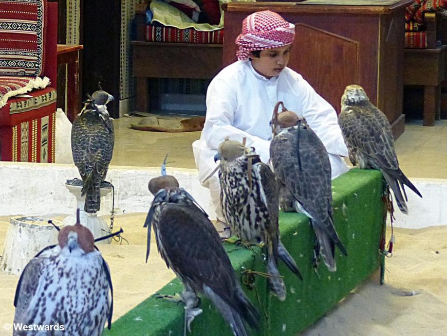 20160120 Doha Souq Waqif Falkenbasar boy P1220986