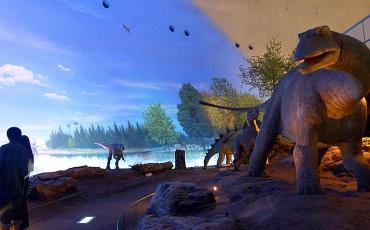 Dinosaur display at the Fukui Prefectural Dinosaur museum