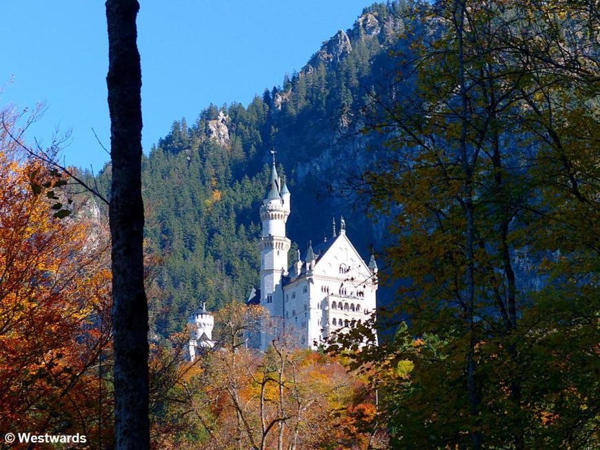 View on Castle Neuschwanstein