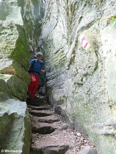 Hiker on a small passage on the Mullerthal trail