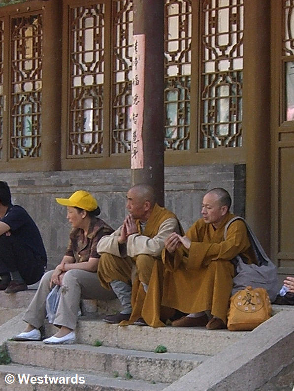 Yellow-robed monks sitting on steps
