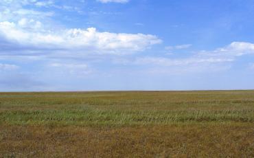 Steppe around Korgalzhyn, Kazakhstan