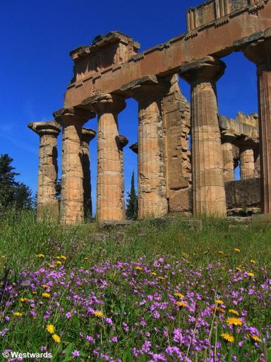 20070403 Cyrene Temple of Zeus4