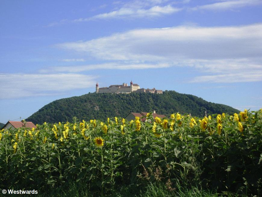 Monastery of Goettweig, on a hill behind sunflowers