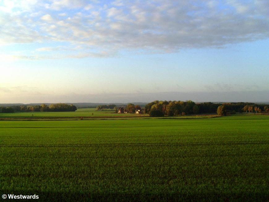 heath landscape Northern Germany