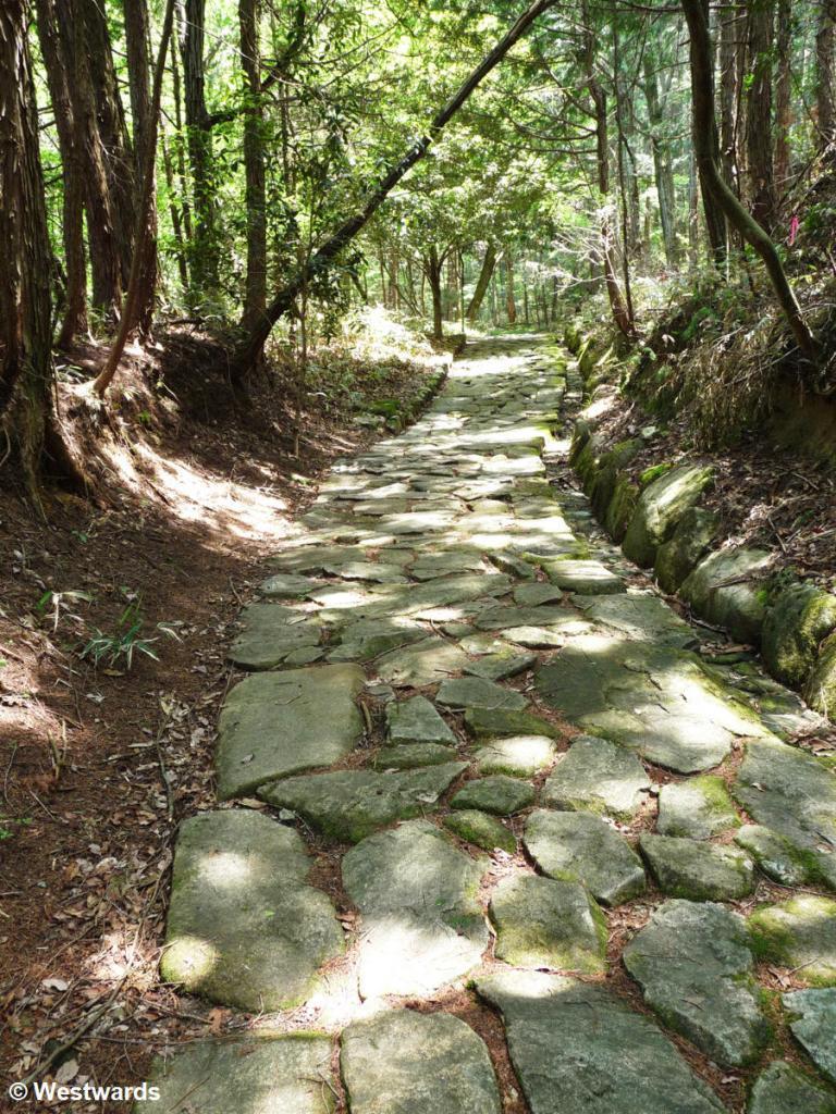 20090512 Nakasendo_Ochiai_pavement 1080189