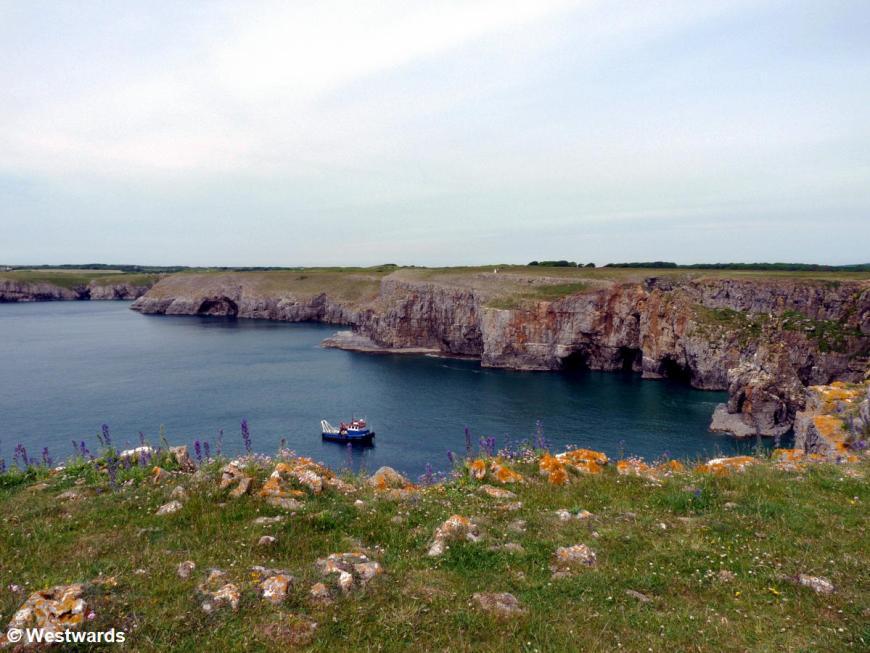coastal cliffs of Pembrokeshire