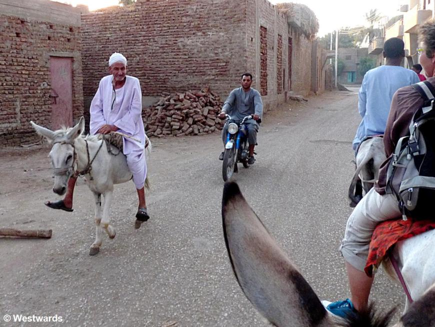 tourist and locals on a donkey ride in Luxor