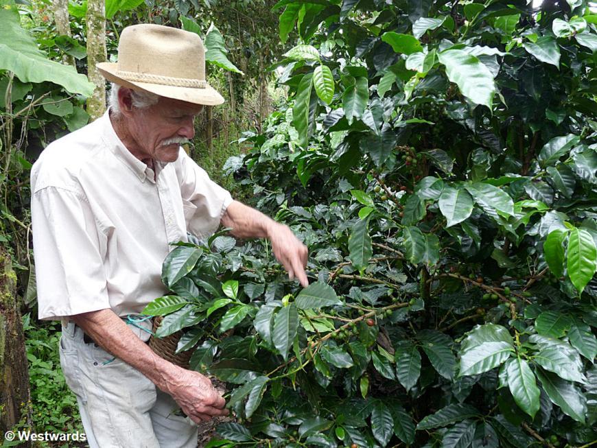 20120123 Salento coffee farm Don Elias 1310377