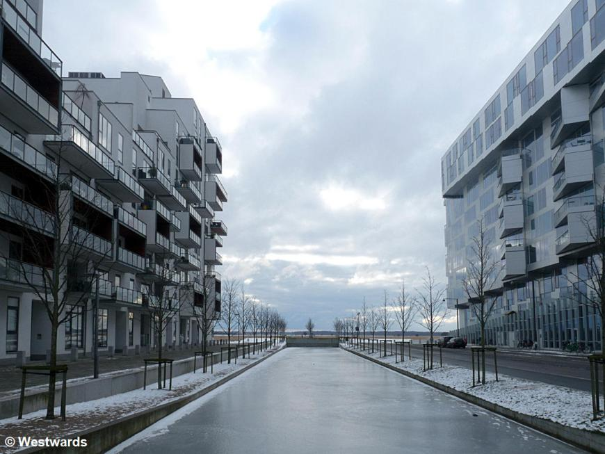 20130122 Kopenhagen Orestad P1400794