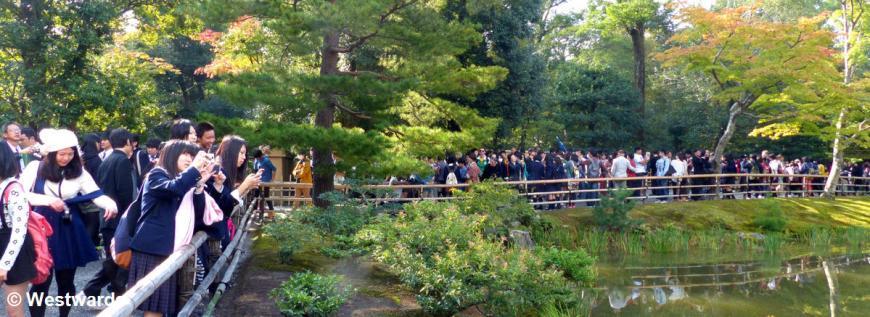 visitors in Kyoto's Kinkakuji Temple