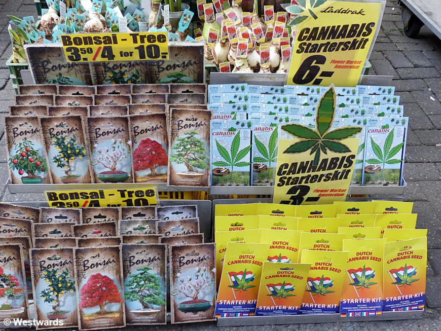 Hemp seeds in a market