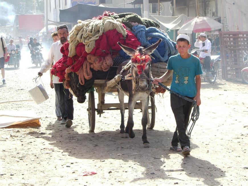 Wool to be sold on the market in Hotan
