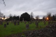 TRF_Twilight in the graveyard 2