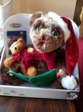 Christmas Bear - Twas the Night Before Christmas