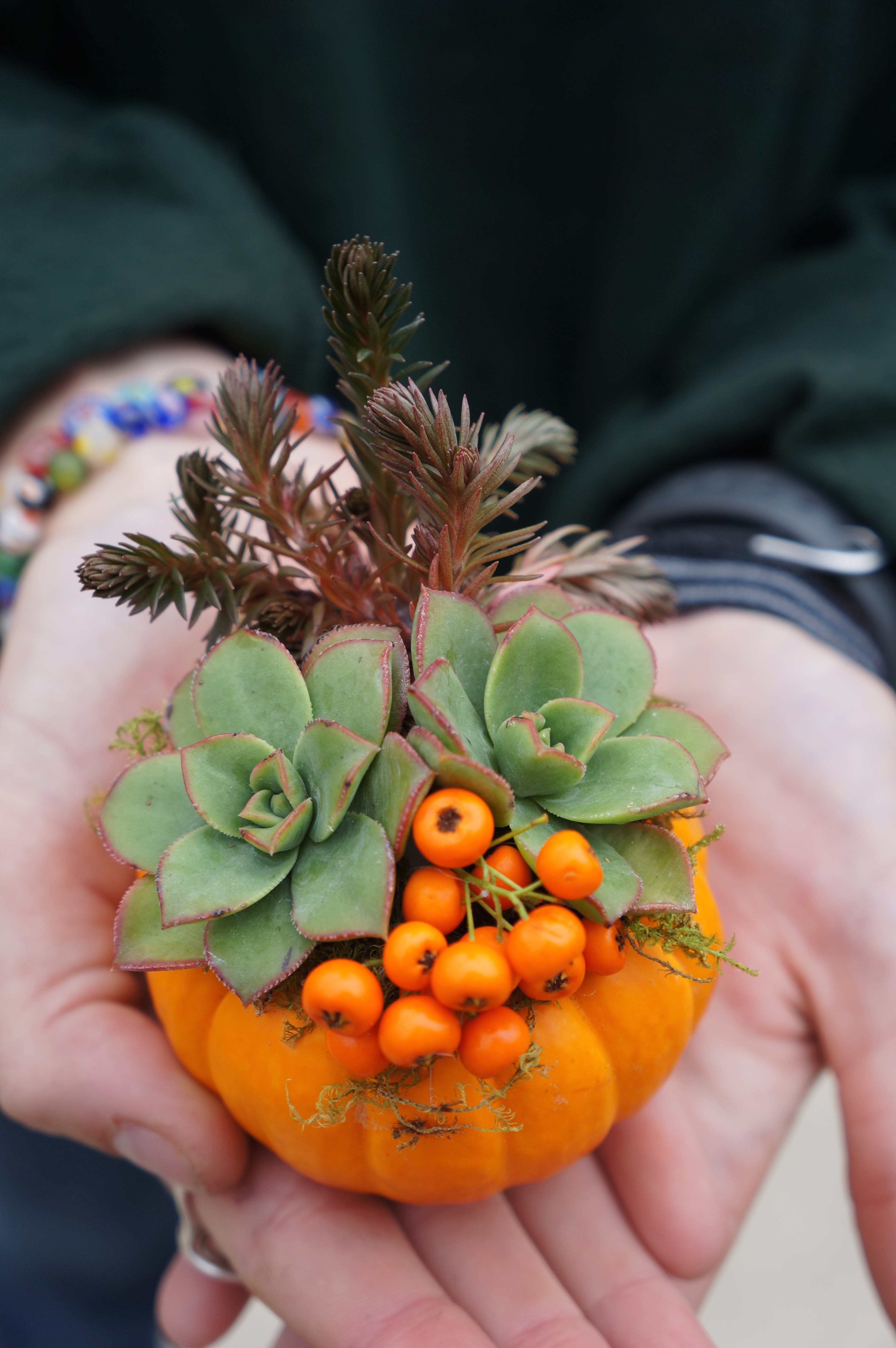Four Ways To Use Mini Pumpkins To Decorate For Fall