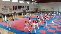 Momento di allenamento 3°Centro Estivo Karate Calabria