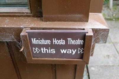 hostas this way